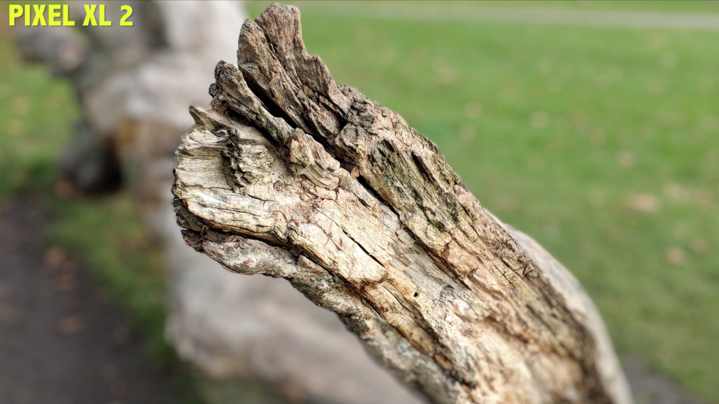 Dead wood shot iPhone X vs Google Pixel 2 XL Camera 1